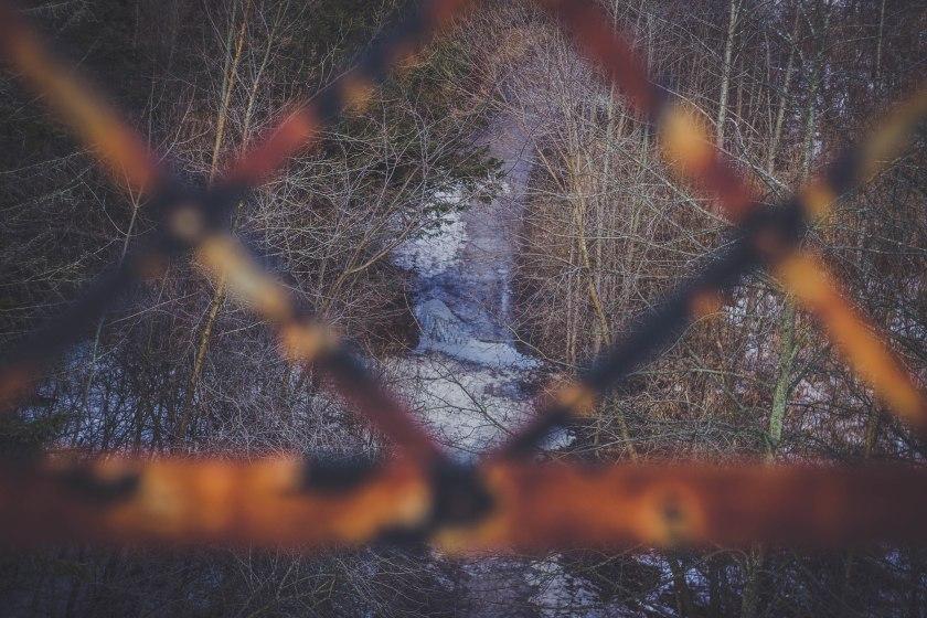 view, bridge, park, toronto, winter, canada