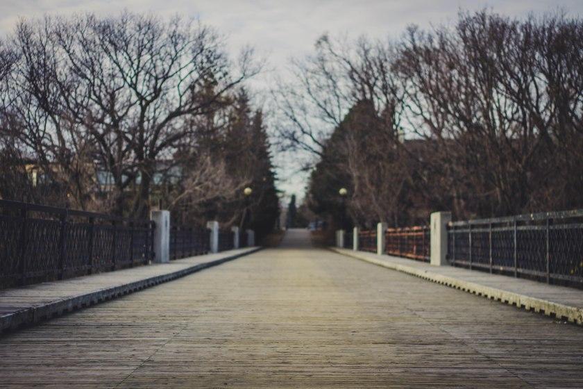 bridge, park, toronto, winter, canada