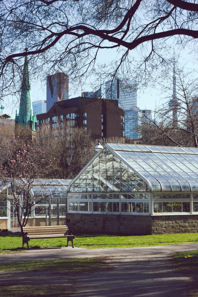 Toronto, allan gardens, greenhouse, park, downtown, city, urban