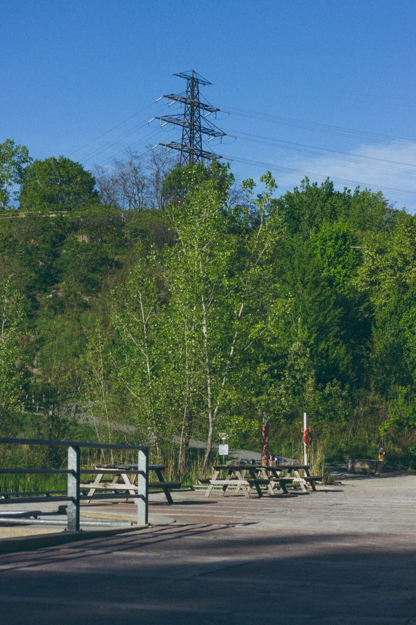 nature, hill, toronto, brickworks