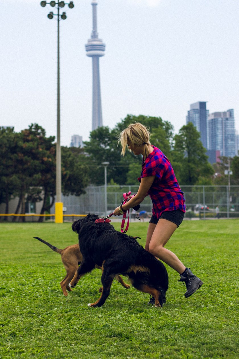 Portrait, Woman, Toronto, King Street, Liberty Village, dog, park